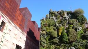 ein hängender Garten im Zentrum Madrids - am Caixa Forum