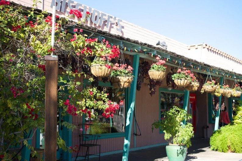 Scottsdale - Brown Ace Street