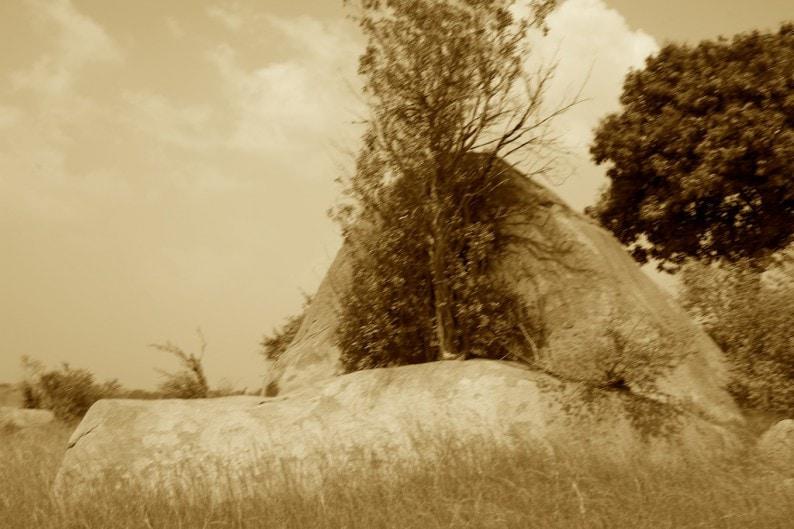 Tanzania - nördliche Serengeti - Granitfelsen