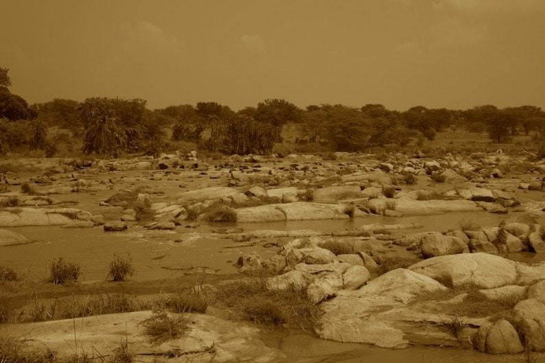 Tanzania - nördliche Serengeti - Mara River
