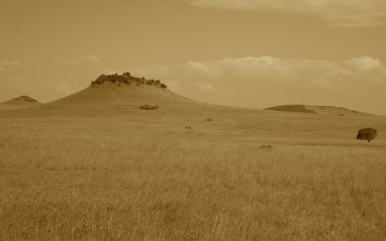 Tanzania - nördliche Serengeti - Turner Hills