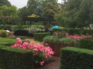 die Rosenbeete in der Garden Society