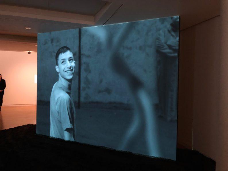 David Claarbout - The Algier