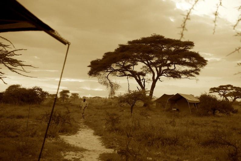 Tanzania - Camp Namiri Plains -