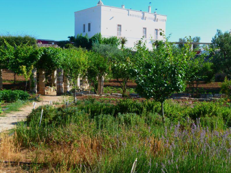 Torre Maizza - der Garten