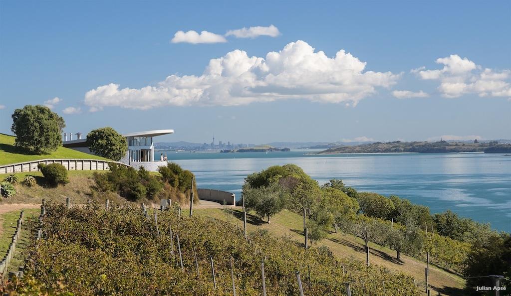 Die Weinberge von Te Whau an der Küste von Oneroa