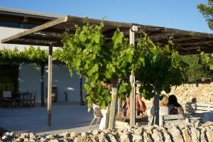 Weingut Binifadet - auf der Terrasse